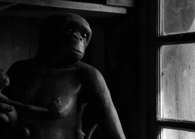 Azare-l'art et la matiere-l'hippanthrope-documentaire-09
