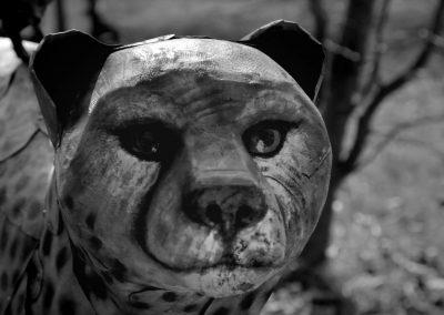 Azare-l'art et la matiere-l'hippanthrope-documentaire-14