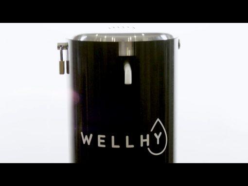Exsto – Wellhy